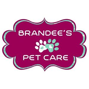 Affordable available pet sitter