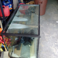 95 gallon fish tank
