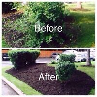 TREE TRIM . GARDEN DESIGN -- Free Estimate & Best Price
