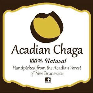 One pound of Organic Acadian Chaga