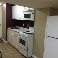 2 Bedroom Basement Apt in Mississauga (Heartland Area)