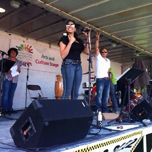 Cazu Latin Band send out a thank you to our great community.. Kitchener / Waterloo Kitchener Area image 1