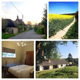 Double room available to let Nr Blandford