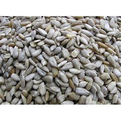 Sunflower Hearts - Wild Bird High Energy Food 1kg