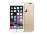 Iphone 6 gold unlocked 16gb brand new condition