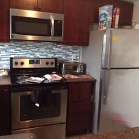 Great location and brand new 2 bedroom town condo