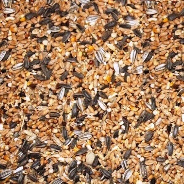 (EUR 0,74/kg) 25kg FutterXL Winterstreufutter Streufutter Vogelfutter