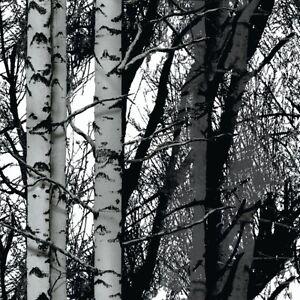 D-C-FIX-BLACK-WHITE-TREES-FORREST-STICKY-BACK-PLASTIC-SELF-ADHESIVE-VINYL-FILM