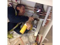 Professional Handyman/Maintenance/Service