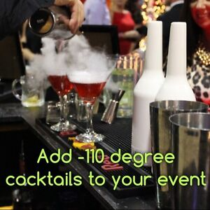 Elite Bartending/portable bars setups/photobooth Regina Regina Area image 8