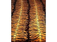 King size blanket bed throw TIGER very soft and warm