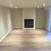 LARGE TWO BEDROOM BASEMENT APARTMENT