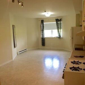 Downtown Apartment for 4 weeks (August)