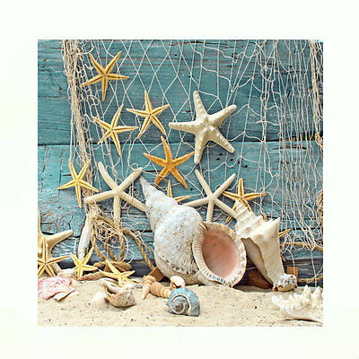 Ocean Life Star Fish Sea Shells Tropical Decoupage Tile Wall Art Hanging