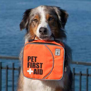 Pet First Aid Certification Course
