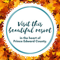 Fall In Love with the Colours of The County this Autumn