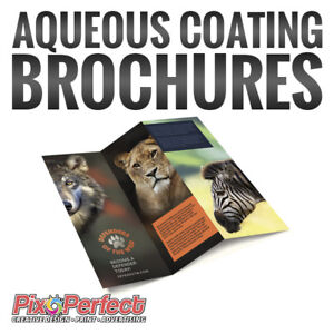 ★Affordable AQ Coated Gloss Brochure Printing ✂$5 OFF COUPON