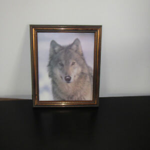 Picture frame with wolf