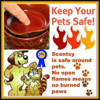 Scentsy WARMERS SAFE FOR USE AROUND PETS