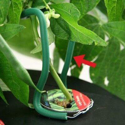 Easy Up Plant - Supporto Piante Per Aerogarden