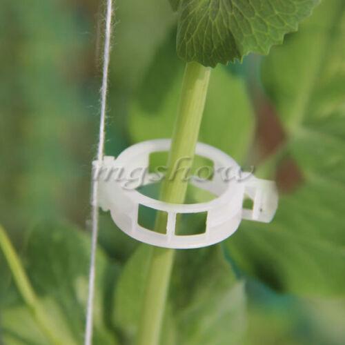 100Pcs Plant Vine Tomato Stem Clips Supports ...