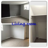 2 bedroom lower level duplex