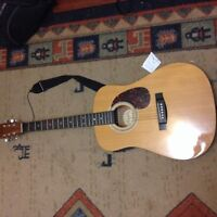 Acoustic electric