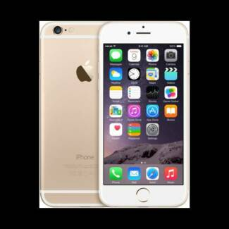 NEW iPhone 6+ Plus 64GB GOLD Strathfield Strathfield Area Preview