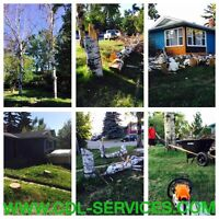 NEED TREE SERVICE?   |   AFFORDABLE RATES