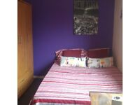 Bright and comfortable double bedroom in a nice flat! Real Pics - Real Room!