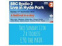 Hyde park British summertime festival in a day
