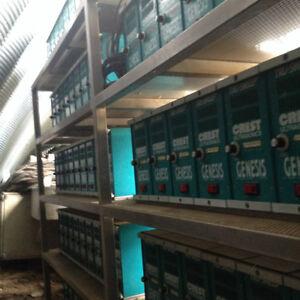 Multi Compartment Robotic Ultrasonic Cleaner Regina Regina Area image 3