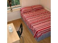 Lovely double bedroom in well-connected area in a nice property!