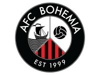 Football Team - AFC Bohemia - Bristol Downs League 1 - Players wanted