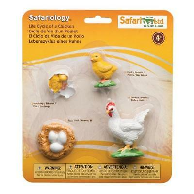 Life Cycle Of Chicken (Life Cycle Of A Chicken Figures Safari Ltd NEW Toys Kids Educational)