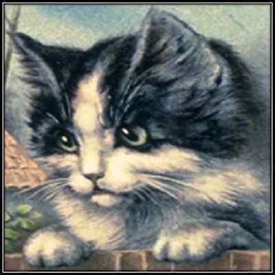 30 Custom Vintage Kitten Personalized Address Labels