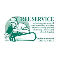 Fully insured tree service and firewood!
