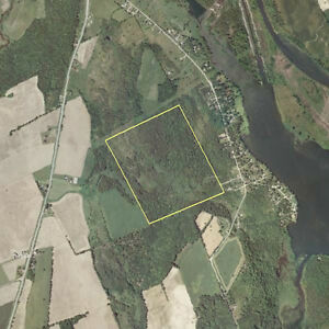 Large Forest Land Parcel Close to Toronto -