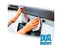 Domestic/Office cleaning services