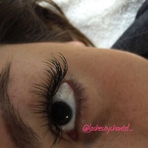 Lashes by Chantel ~ New & LOWER Holiday Pricing  Kitchener / Waterloo Kitchener Area image 2