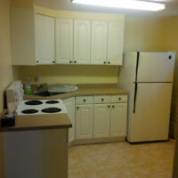 All Inclusive 1 bedroom basement apartment - Available Now