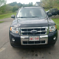 2009 Ford Escape Limited SUV, Crossover