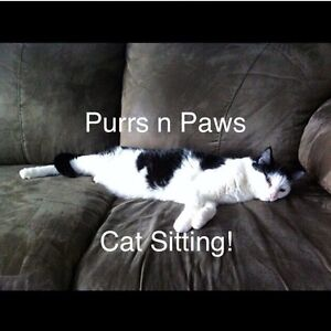 Purrs n Paws Cat sitting in Spruce Grove/Stony Plain