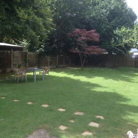 Perfect room for couple in Charminster