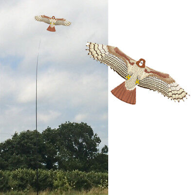 ern Bird Scarer Protect Farmers Crops. With A Free Line  (Kite-kits)