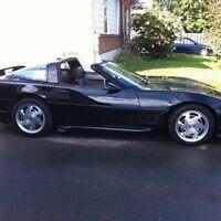 Corvette 89 Kit Greenwood