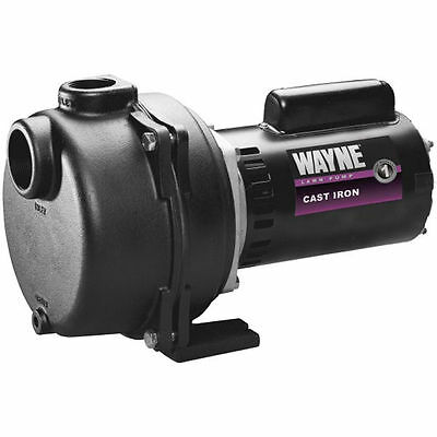 Wayne Wls100 - 40.8 Gpm 1 Hp Cast Iron Lawn Sprinkler Pump