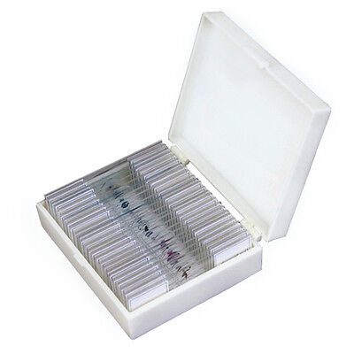 25 Glass Prepared Microscope Slides with Plastic Box on Rummage