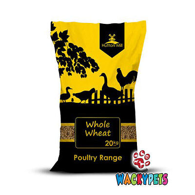 Hutton Mill Whole Wheat 20kg for Poultry / Chicken Food / Feed (HMI004)