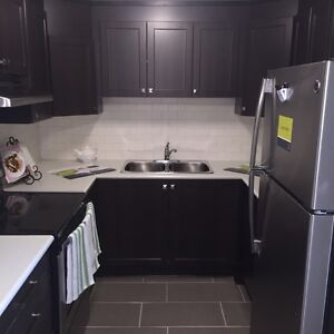 RENOVATED LARGE TWO BDRM IN NEPEAN FOR SEPT OR OCT
